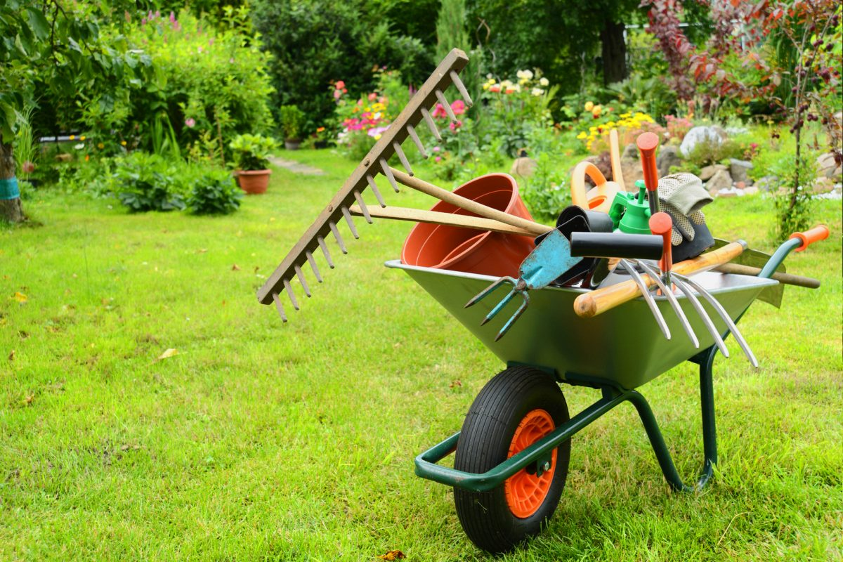 Comment entretenir son jardin en automne ?